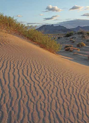 Sand dunes with Funeral Mountains. David Jesse McChesney photo